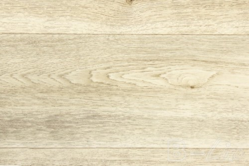 Columbian_oak_629L