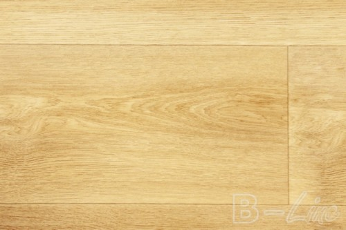 Columbian_oak_636L
